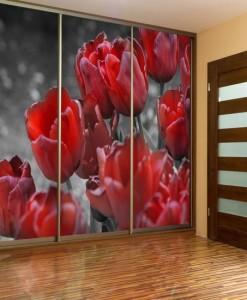 Fototapeta z czerwonymi tulipanami