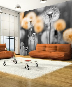 Foto-tapeta z pomarańczowymi dmuchawcami
