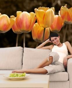 Tapeta pomarańczowe tulipany