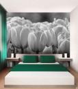 Foto-tapeta tulipanowa rabatka