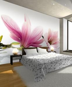 Tapeta kwiaty magnolii