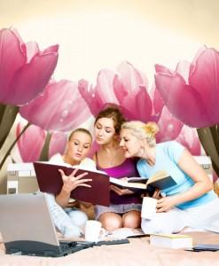 Fototapeta łąka tulipanów
