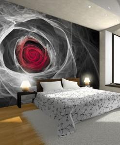 Fototapeta czerwona róża dymna