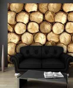 Fototapeta drewno