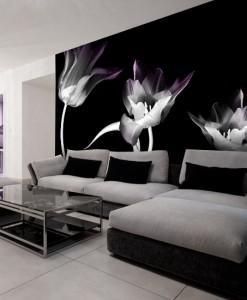 Fototapeta tulipany nocą