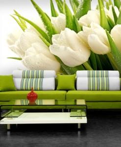 Tapeta bukiet białych tulipanów