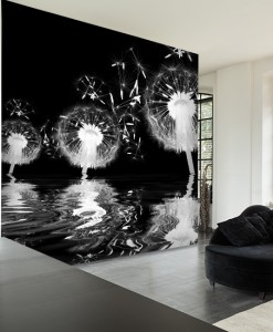 Foto-tapeta dmuchawce na czarnym tle