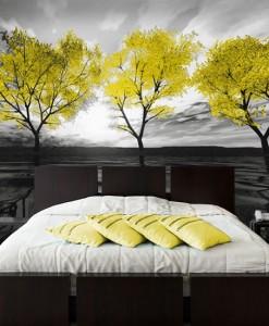 Foto-tapeta trzy żółte drzewa