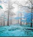 Tapeta polana w lesie