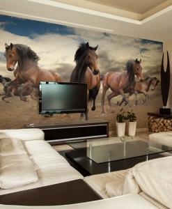 Foto-tapeta konie w galopie