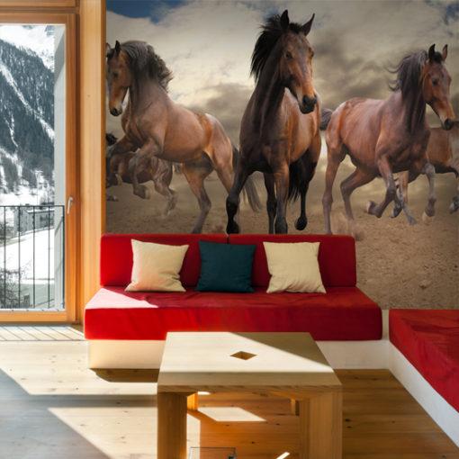 fototapety z koniem