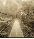 Tapeta z mostem w brązie
