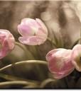 Tapeta z tulipanami w różu