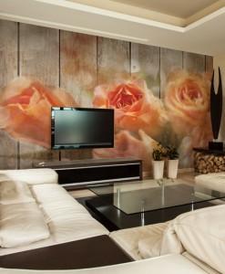 Foto-tapeta róże na tle desek