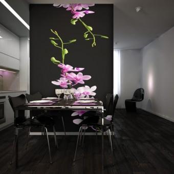fototapeta orchidee