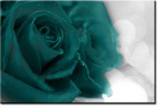 tapety z różami