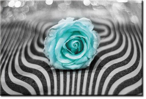 tapety z różą