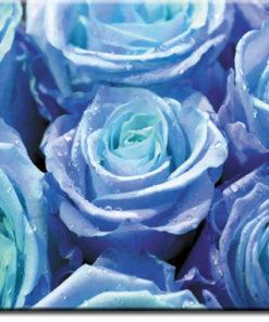 tapety z różąmi