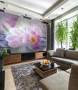 fototapety z tulipanami