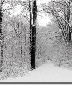tapety z zimowym pejzażem