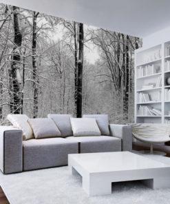fototapety z drzewami w śniegu