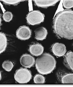 tapety z kłodami drewna
