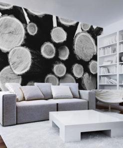 fototapety z kłodami drewna