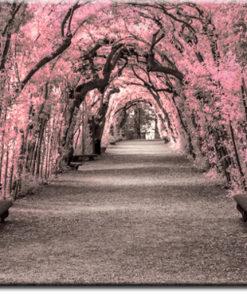 tapety z aleją drzew
