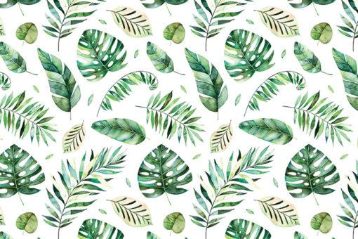 tapety z motywem tropikalnym