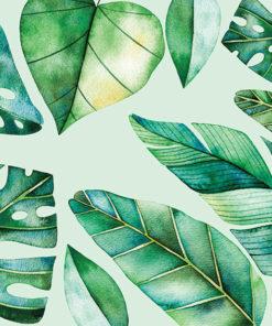 tapeta z palmami