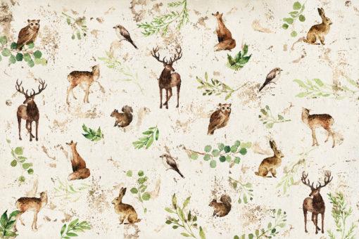 tapeta zwierzęta i rośliny