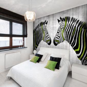 fototapety zebry