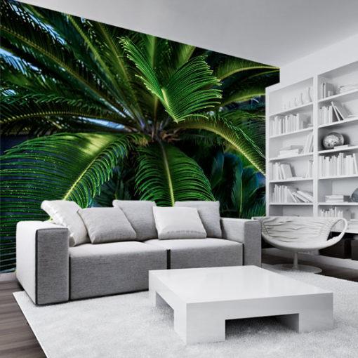 tapeta z motywem palmy