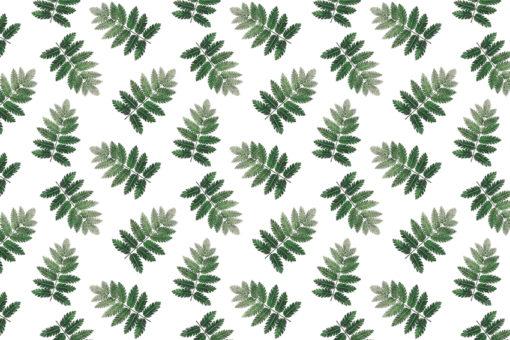 tapeta z liśćmi