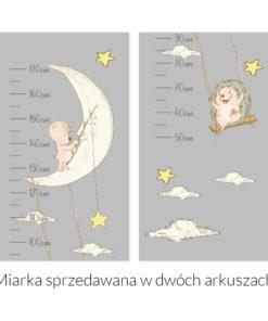 Miarka wzrostu z nocnym niebem