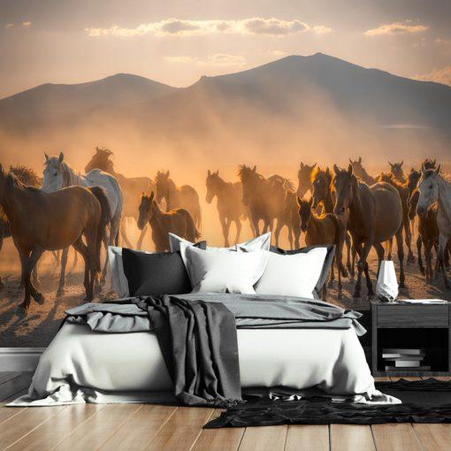 Tapeta z końmi