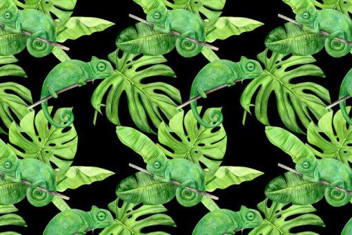 tropikalny motyw na fototapecie