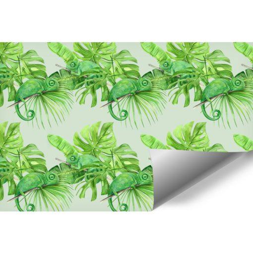 Tropikalna fototapeta z kameleonami