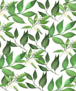 Fototapeta - Motyw roślinny