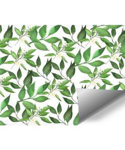 Fototapeta do sypialni - Motyw roślinny