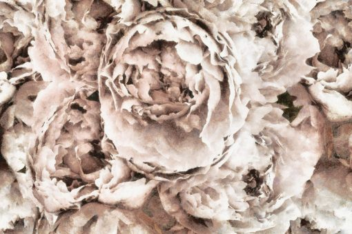 Tapeta - Eleganckie kwiaty