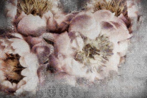 Botaniczna tapeta z kwiatami
