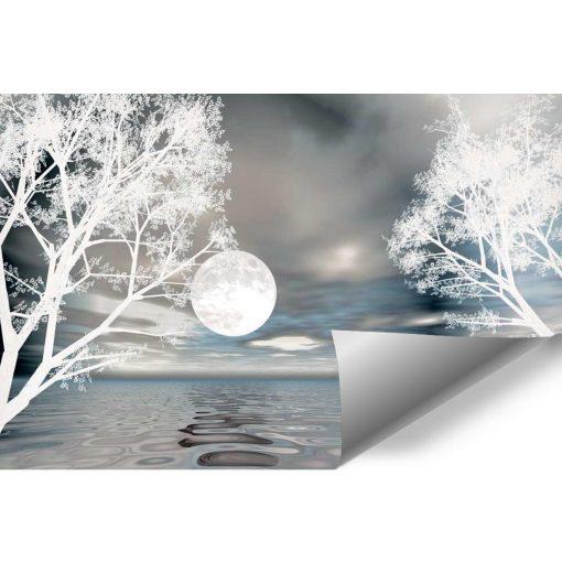 Fototapeta z motywem księżyca do salonu