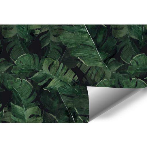 Fototapeta z motywem liści palmowych