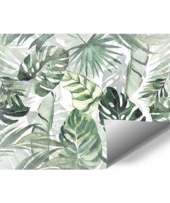 Fototapeta liście z dżungli
