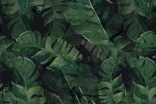 Foto-tapeta botaniczna
