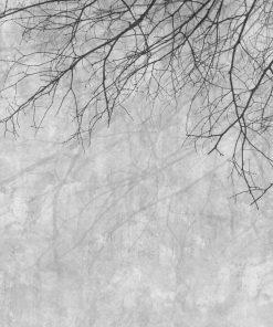 Gałęzie na szarym tle - fototapeta