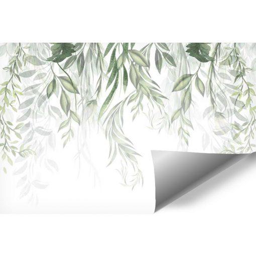 Foto-tapeta z motywem botanicznym w zielonym kolorze