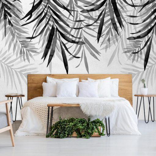 Fototapeta liście palmowe w szarościach