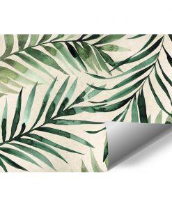 Foto-tapeta tropikalne liście